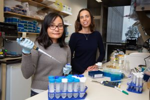 Salk Institute scientists Jovylyn Gatchalian and Diana Hargreaves. Credit: Salk Institute
